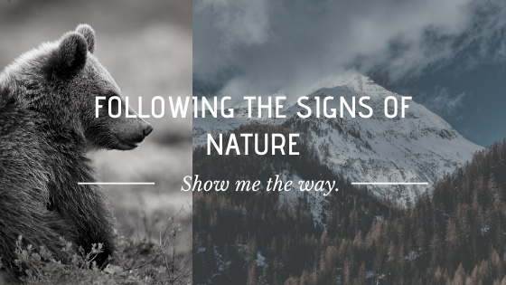 Following the Signs of Nature